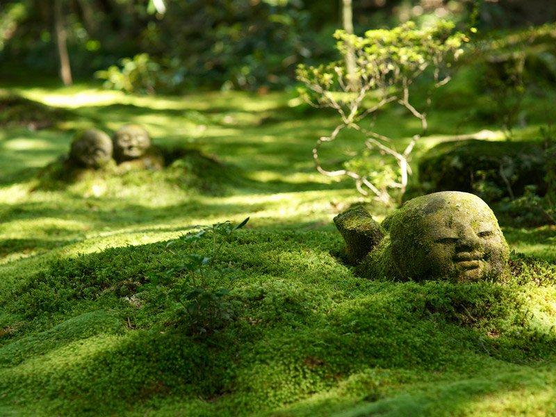 Buda jardines Sanzen-in