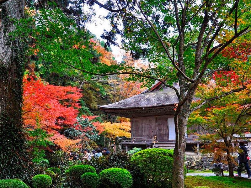 Jardines templo Sanzen-in