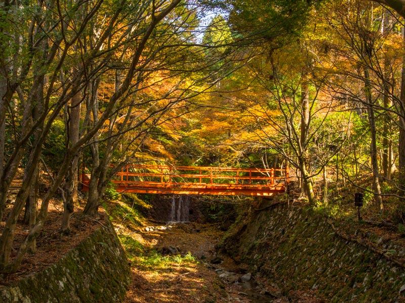Puente jardines templo Sanzen-in