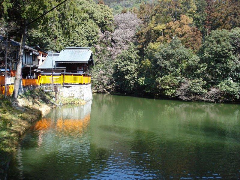 Lago en el Fushimi Inari