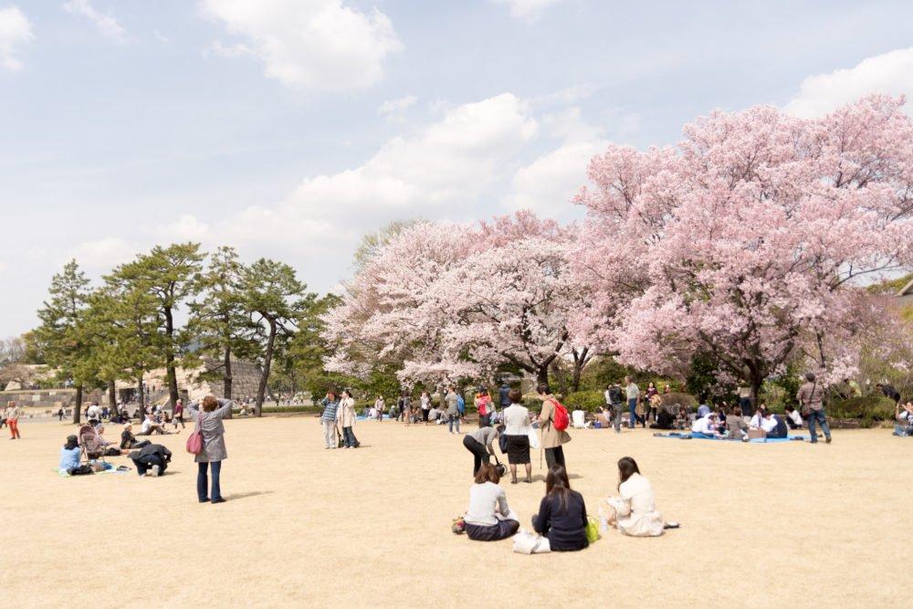 Plaza frente al Palacio Imperial de Tokyo