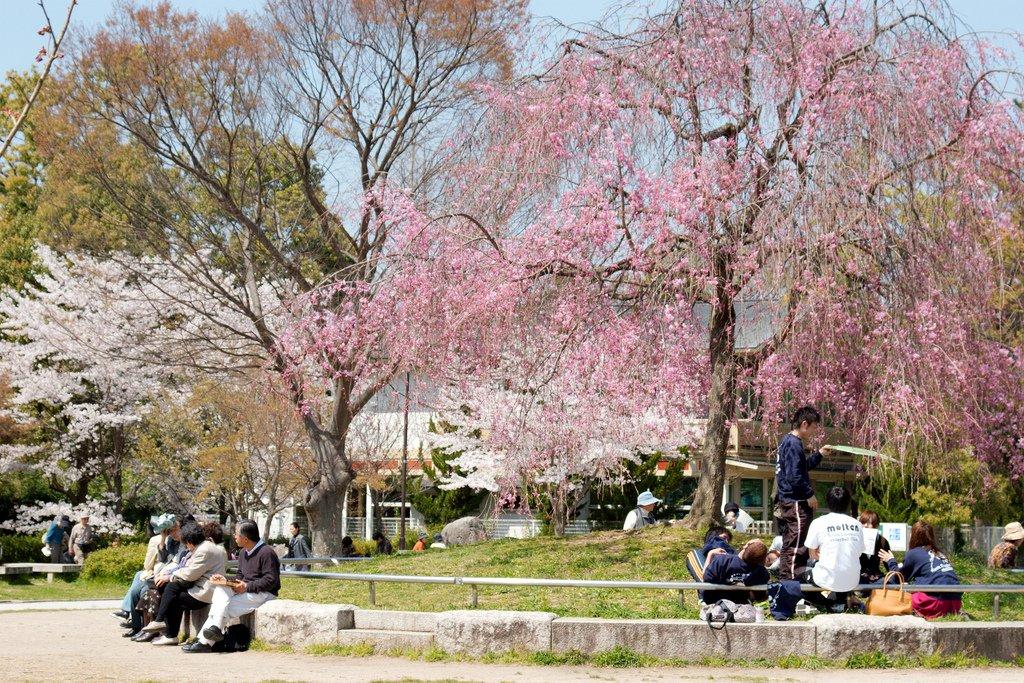 Jardines Heian Jingu