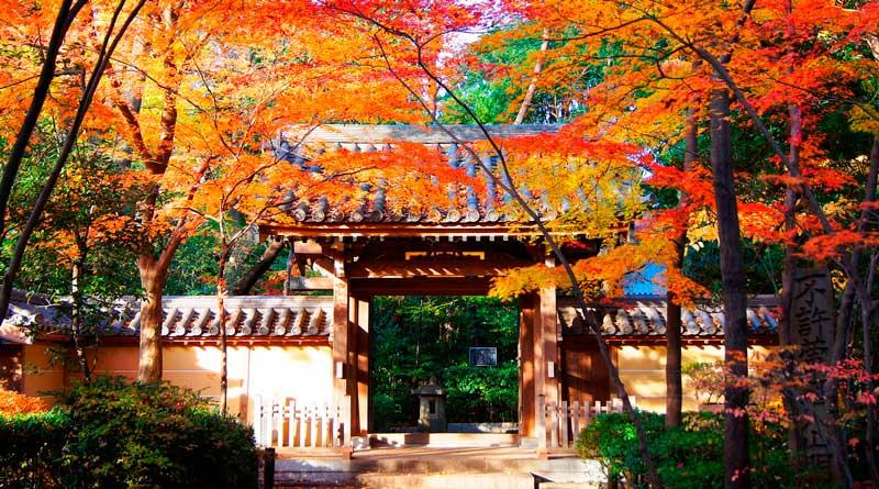 Vista Templo En otoño