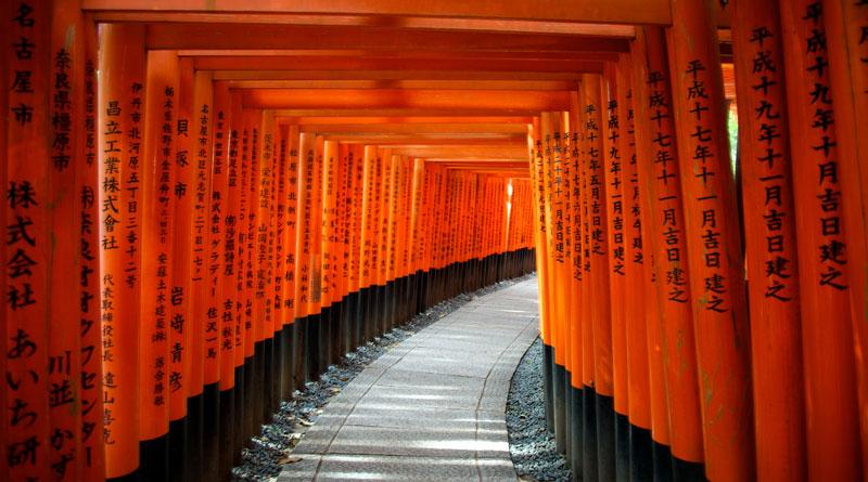 Camino de Torii Fushimi Inari