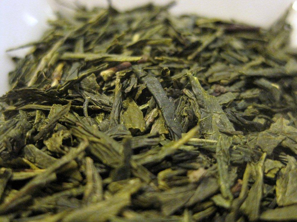 té verde sencha japonés