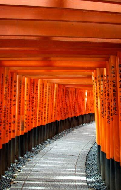Toriis Fushimi Inari