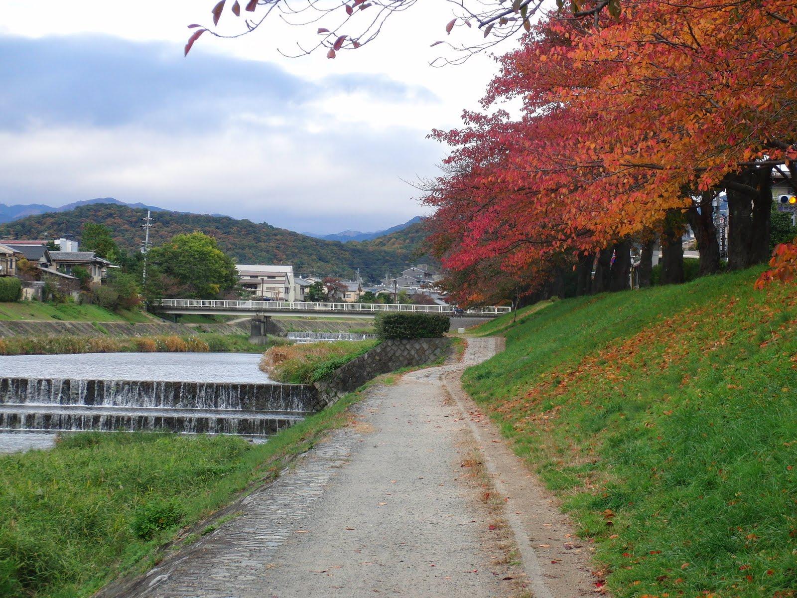 Paseo cerca de mi casa en Kioto