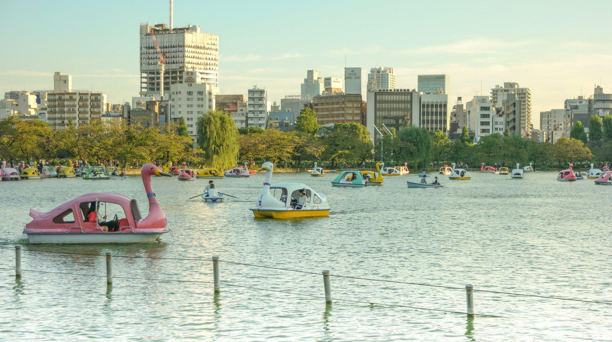 Estanque parque Ueno