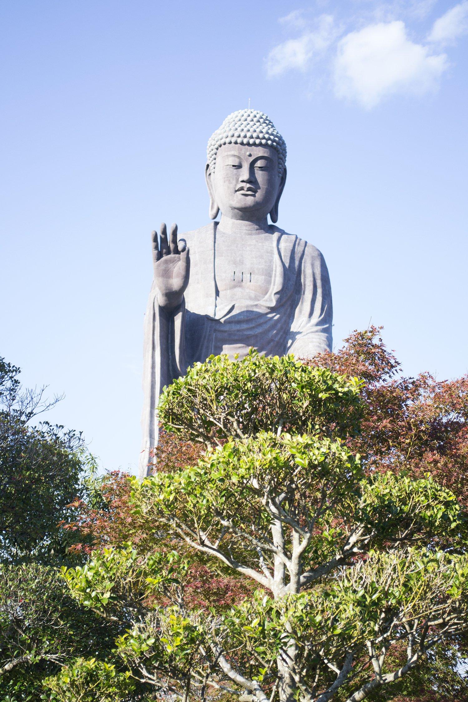 Buda desde el jardín del Ushiku Daibutsu