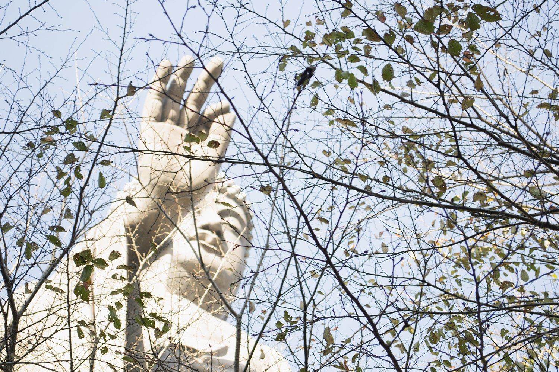 Ushiku Daibutsu desde el jardín