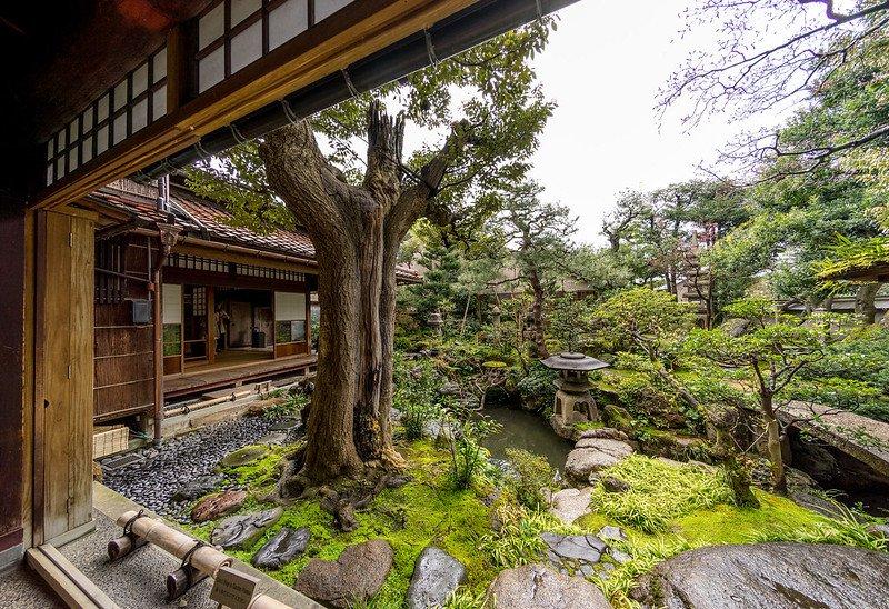 Casa Nomura- CC Kyle Hasegawa