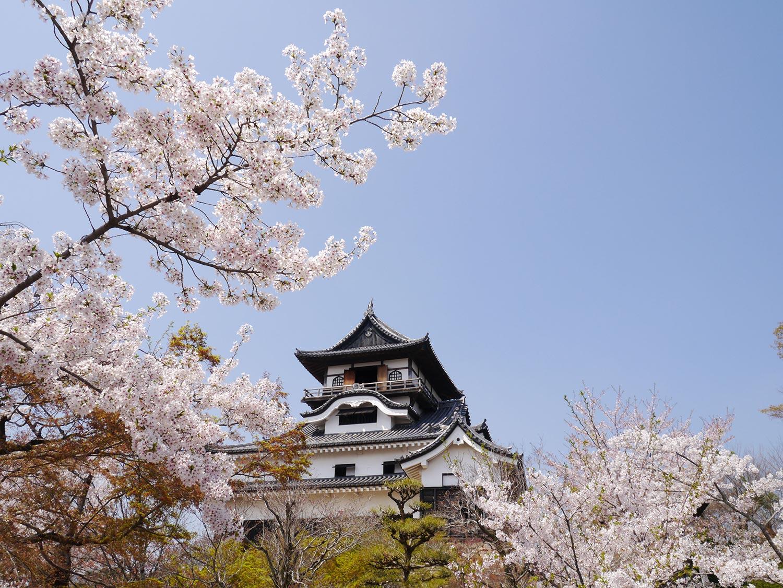 Castillo de Inuyama