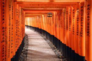 Día 7 – Nara: Tierra de ciervos