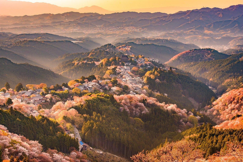 Monte Yoshino en primavera, sakura en Japón