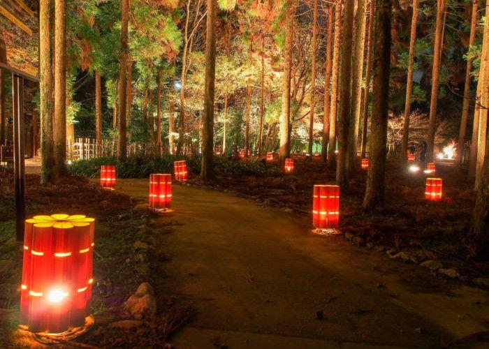 Iluminacion hanatouro Arashiyama Kyoto