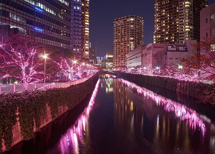 Iluminacion Rio Meguro Tokio