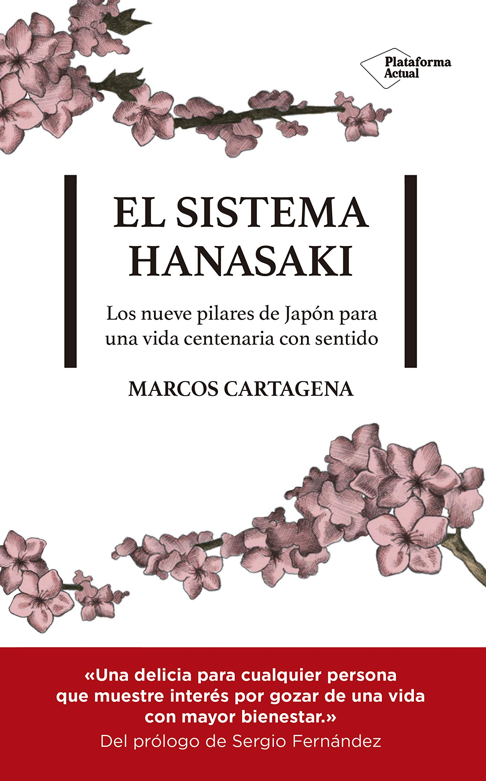 Portada-El sistema Hanasaki