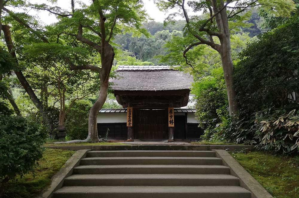 Templo japonés en medio de la naturaleza